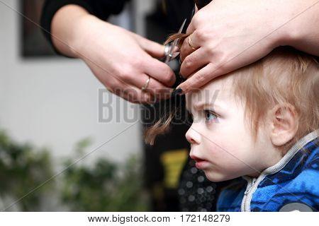 Serious Kid Having A Haircut First Time