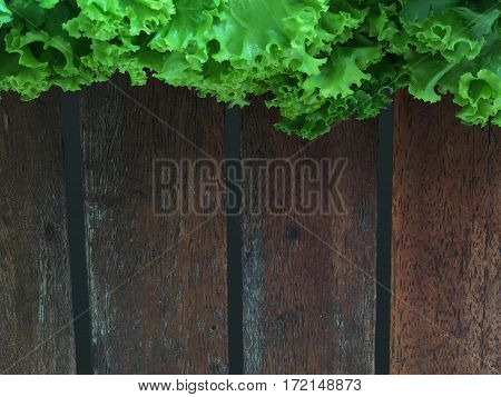 Wooden table and salad lettuce. Top view of fresh green salad on wooden background.