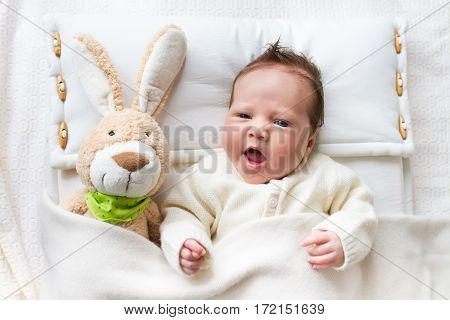 Newborn little baby wearing a warm knitted jacket playing with toy bunny relaxing on white cable knit blanket in sunny nursery. Kids winter clothing and bedding. Hand made toys and textile for children.