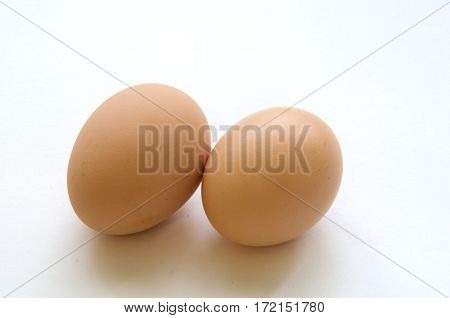 egg , Chicken Egg , eggs on a white background