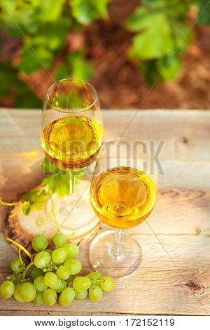 Green Grape And Two Glasses Of White Wine In The Vineyard
