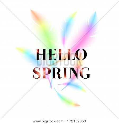 Hello Spring, bright bird feathers on a white background. Fashionable and modern vector poster.