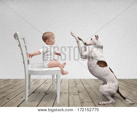 small child sits on a chair and playing with the dog
