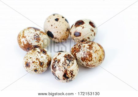 The quail eggs isolated on white backdrop