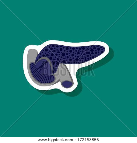 duodenum and pancreas paper sticker on stylish background