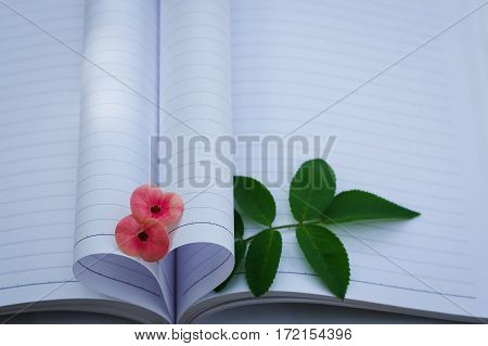 Couple of Crown-of-thorns flower and rose leaves with heart shape which made by white paper notebook