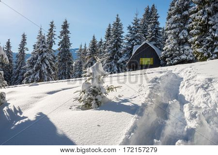 Log Cabin, Shelter In The Winter Mountains