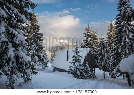 Magic Winter Landscape - The Old Wood Hut, Covered With Snow