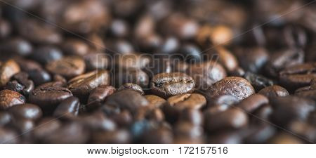 Roasted Coffee Beans Background. Close Up View