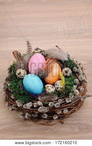 Decorations for Easter. Bird's nest with moss lined with feathers colored eggs and willow branches