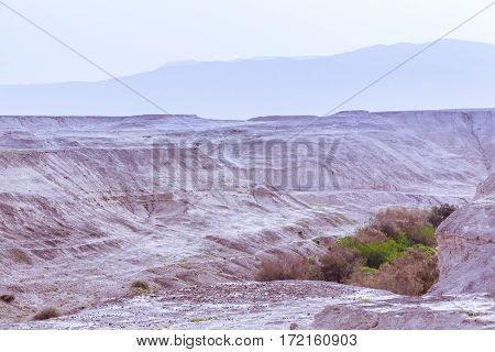 Desert arid valley with little vegetation at colorful soft sunset with mountains on background