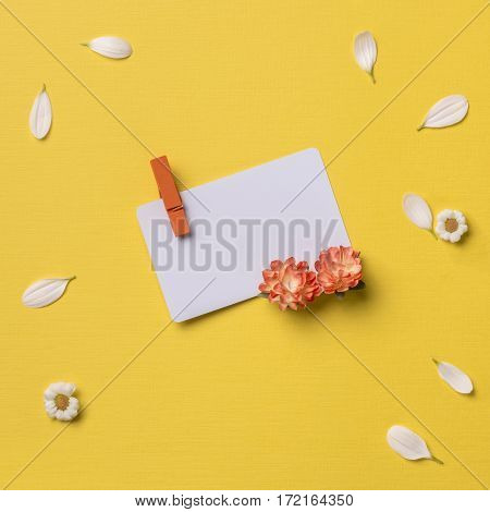Spring or summer background with copy space for text: business / credit / visiting card mockup with clothespin chamomiles and petals orange flowers. Top view. Flat lay. Square image.