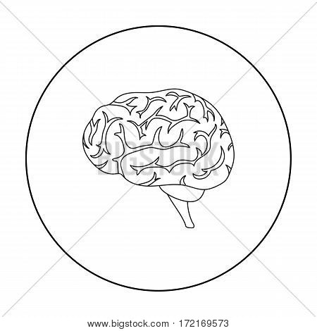 Brain icon in outline style isolated on white background. Organs symbol vector illustration.