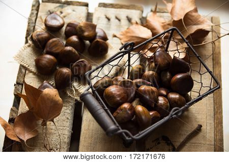 Fresh shiny chestnuts in wire basket scattered on burlap cloth dry brown leaveson vintage wood box autumn fall harvest cozy atmosphere top view