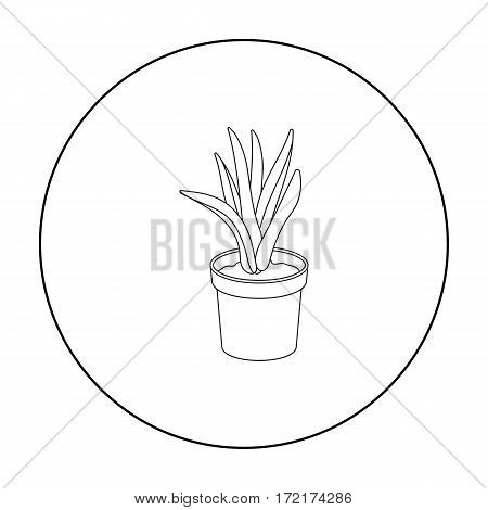 Office plant in th flowerpot icon in outline style isolated on white background. Office furniture and interior symbol vector illustration.