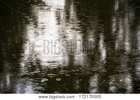 Reflections of trees in the pond wrinkled rain. The surface of the pond during the rain.