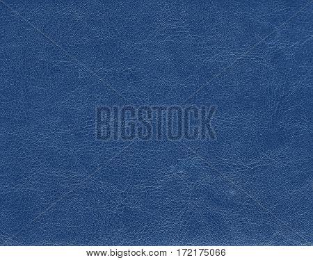Blue Color Leather Texture.