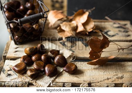 Fresh chestnuts in wire basket scattered on burlap cloth dry brown leaves on vintage wood box autumn, fall, harvest, cozy atmosphere