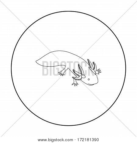 Mexican axolotl icon in outline style isolated on white background. Mexico country symbol vector illustration.