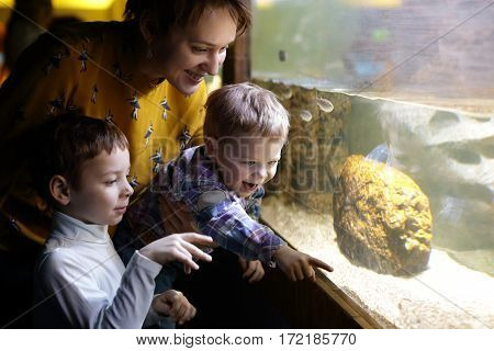 Family looking at fishes in an aquarium
