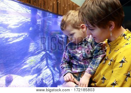 Mother And Son Looking At Aquarium