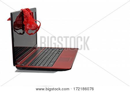 Woman red panties on laptop. Isolated on white background.