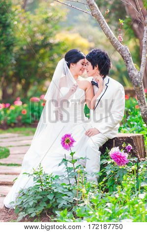 Asian Bride And Groom On Natural Background