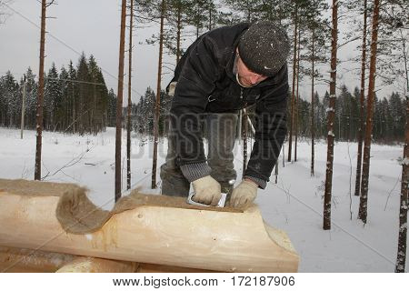 Leningrad Region Russia - February 2 2010: Log cabin build worker is placed wall insulation between logs.