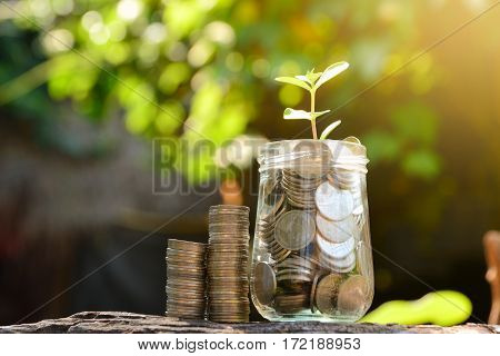 Save money with stack coin for growing your business and plant under the sun light