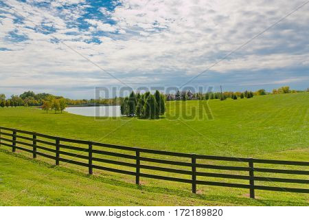 Country house and pond on sunny summer day