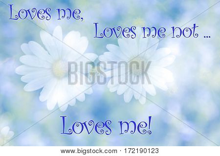 Abstract blurred daisy flowers on natural background with the text Loves me loves me not.