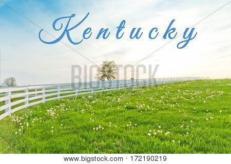 Kentucky card. Country summer landscape. Kentucky, USA