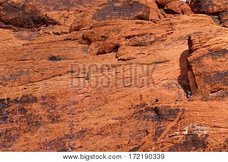 Rock climbing in Red Rock Canyon Nevada USA
