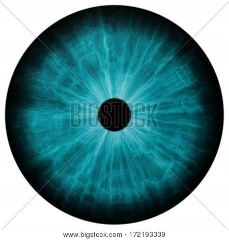 Illustration Of Human Green Eye, Light Reflection.