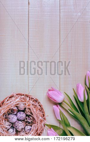 Easter background pink tulips on wooden table, quail eggs, nest, top view.