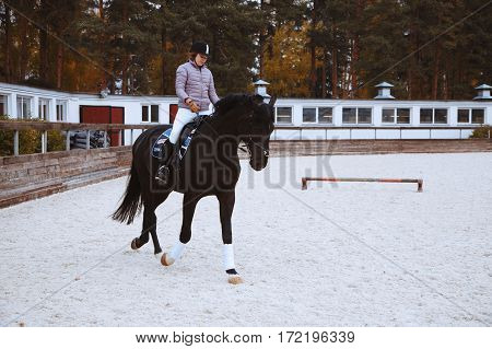 Young Jockey Brave Girl Rides On A Horse Show Jumping. Rider On The Horse Sports Competitions