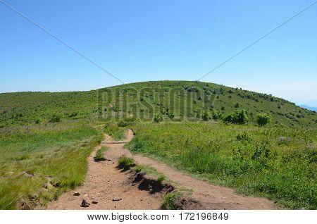 Mountain trail at Black Balsam Bald in North Carolina