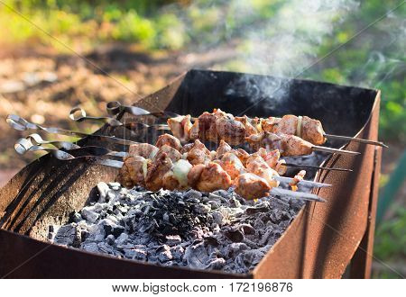 Smoky Grilled Marinated Meat Skewers Chicken