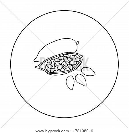 Roasted cacao beans icon in outline style isolated on white background. Herb an spices symbol vector illustration.