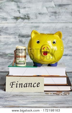 Piggy bank, books and money. Finance and saving concept.