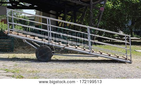 Livestock Loading Ramp for Cattle at Farm