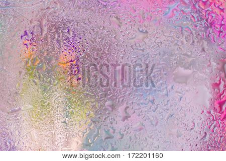 Flowers of primroses behind the wet window with realistic rain drops. Abstract background in modern halftones with raindrops, blurred style. Delicate tints for modern pattern, wallpaper, banner design