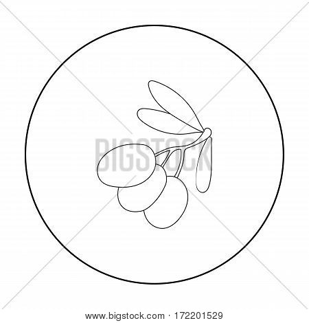 Black olives on the branch icon in outline style isolated on white background. Greece symbol vector illustration.
