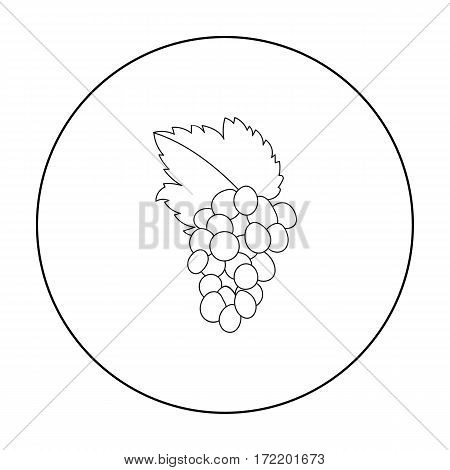 Bunch of grapes icon in outline style isolated on white background. Greece symbol vector illustration.