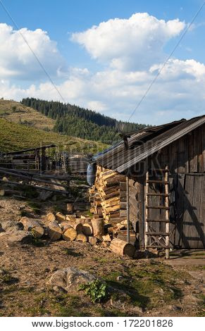 Old wooden shed in the Ukrainian Carpathians with the stack of firewood.