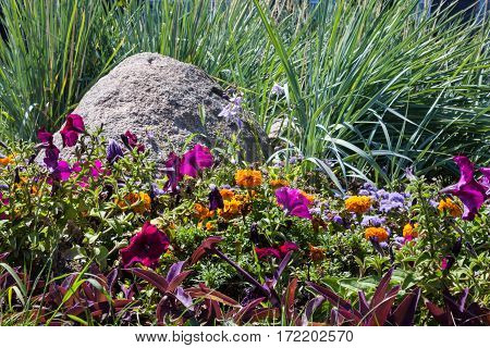 Flowerbed with big gray stone and different flowers and plants.