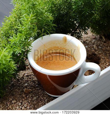 Espresso Coffee In Ceramic Cup