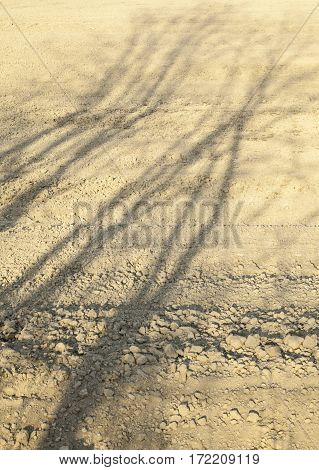 Ploughed field with the shadows of the leafless trees in the spring day.