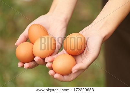 Female hands holding raw eggs, closeup