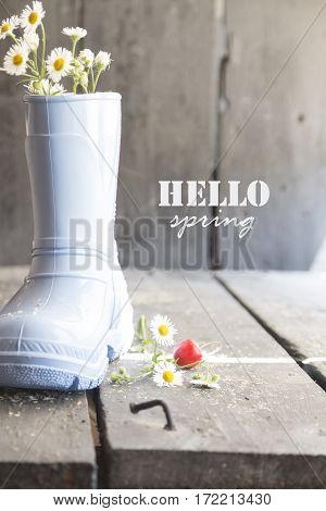 Daisy and boots on a vintage background and text hello spring